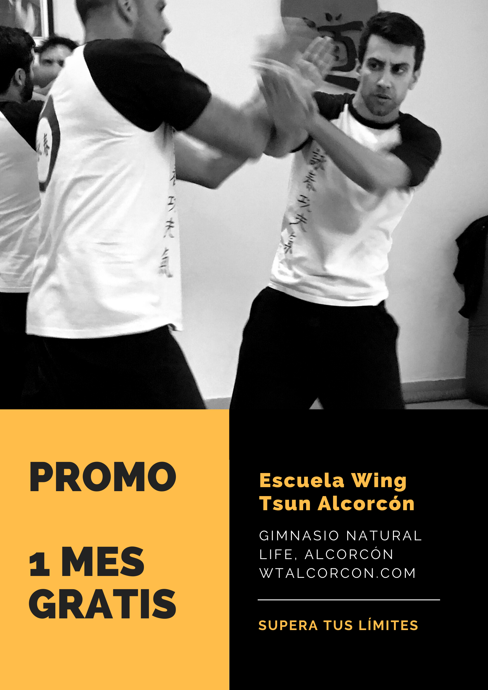 escuela wing tsun alcorcón (3)